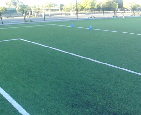 striping for grass & turf sports fields